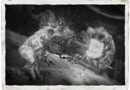 Date de sortie du DLC4, dernière carte «Forsaken»